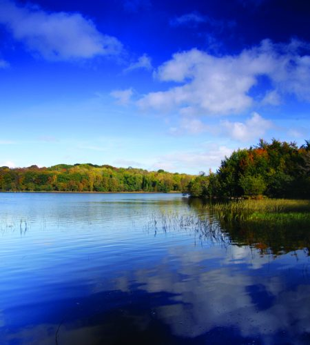 Lower Lough Erne is one of the most dramatic natural landscapes in Northern Ireland. Formed by a deep glacial trough with extensive open waters, offshore islands and the bold escarpment of the Magho Cliffs to the south, it stretches for 20 miles from Enniskillen to Rosscor.
