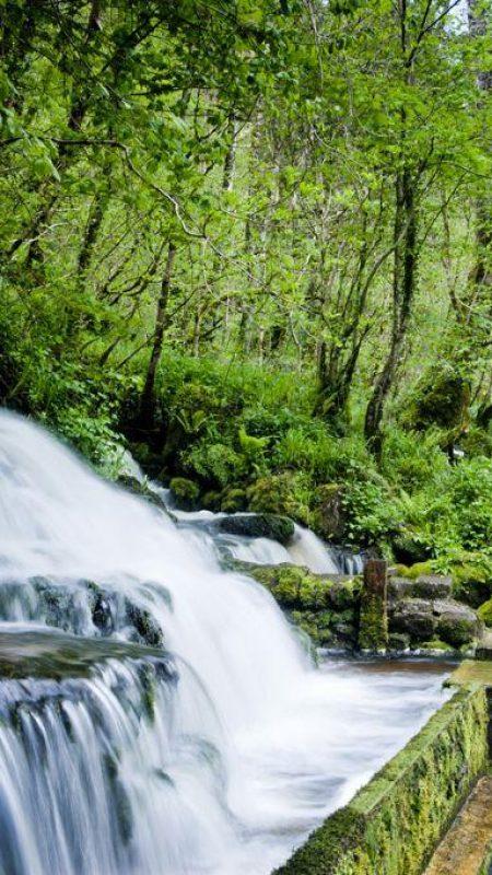 cladagh-glen----marlbank-national-nature-reserve2